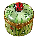 small canister with grass and clove r  Limohrd box, ladybug on top